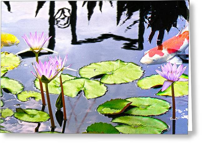 Water Garden Digital Art Greeting Cards - Coy Koi Greeting Card by Doug Kreuger