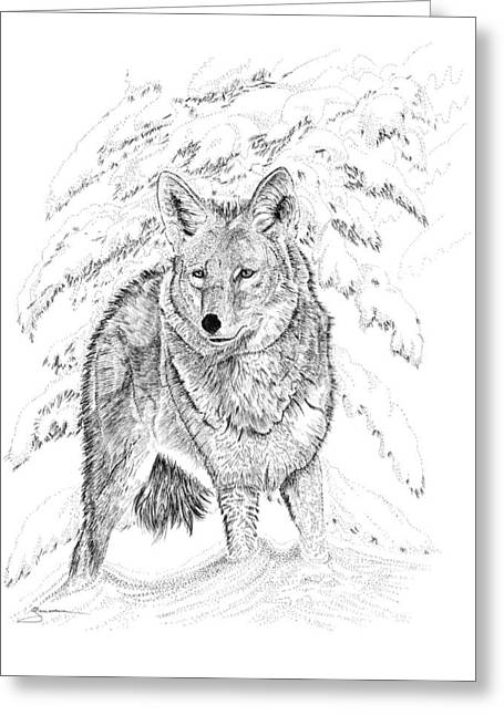 Winter Prints Drawings Greeting Cards - Coyote Greeting Card by Carl Genovese