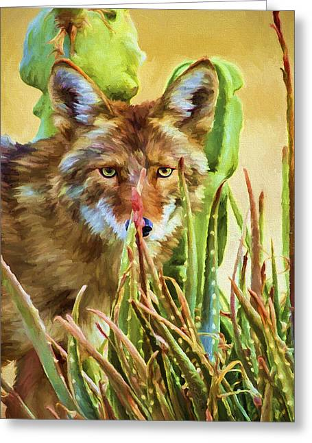 Earthtone Greeting Cards - Coyote In The Aloe Greeting Card by David Wagner
