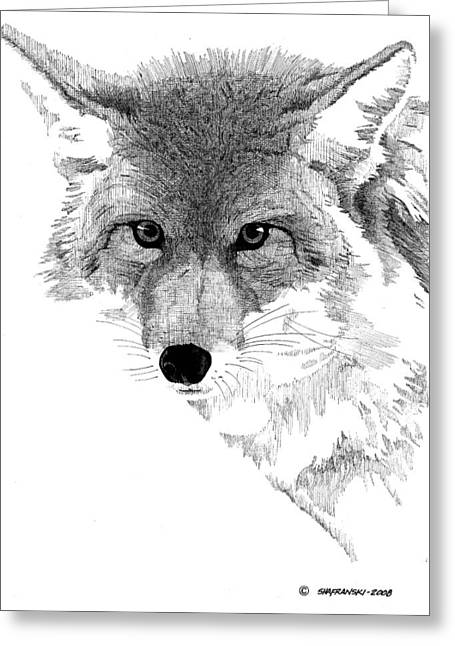 Ink Drawing Greeting Cards - Coyote Greeting Card by Paul Shafranski