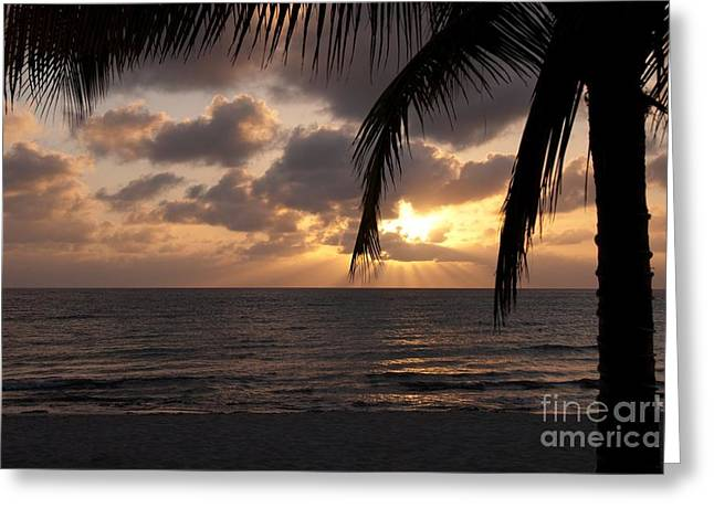 Cozumel Greeting Cards - Cozumel Sunset Greeting Card by Charles Dobbs