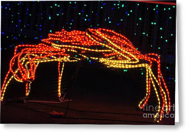 Christmas Lights Greeting Cards - Crab Greeting Card by Mandy Judson