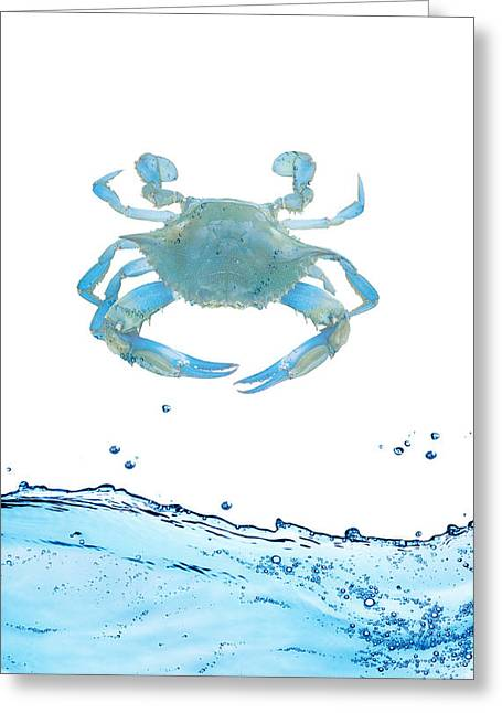 Decorative Fish Greeting Cards - Crab Strolling Around Greeting Card by Sheela Ajith