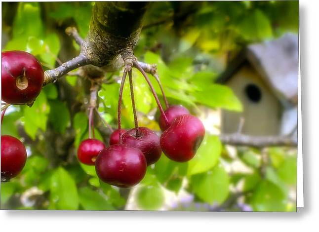 Edibles Greeting Cards - Crabapple Hill Greeting Card by Karen Wiles