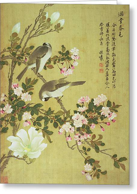 Blossoming Greeting Cards - Crabapple, Magnolia And Baitou Birds Ink And Colour On Silk Greeting Card by Ma Yuanyu
