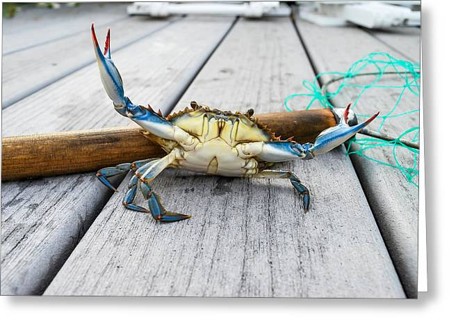 """""""crab Nets"""" Greeting Cards - Crabby Greeting Card by William Mckee"""