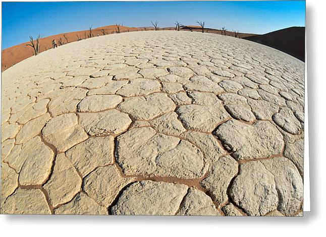 Park Scene Greeting Cards - Cracked Desert Landscape, Dead Vlei Greeting Card by Panoramic Images