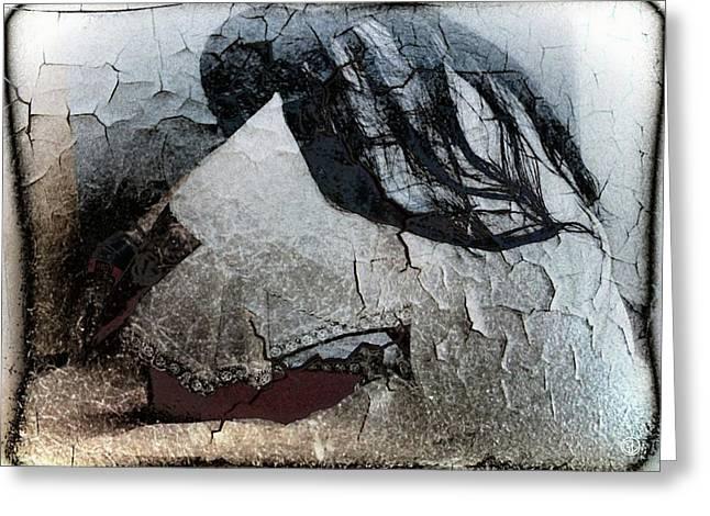 Cracked Dreams Greeting Card by Gun Legler