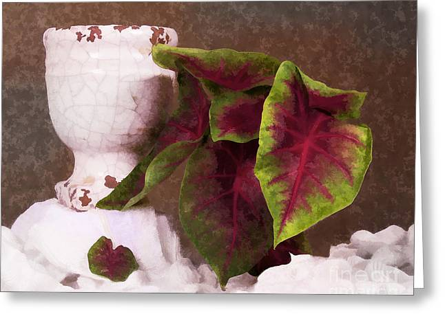 Broken Vase Greeting Cards - Cracked Greeting Card by TN Fairey