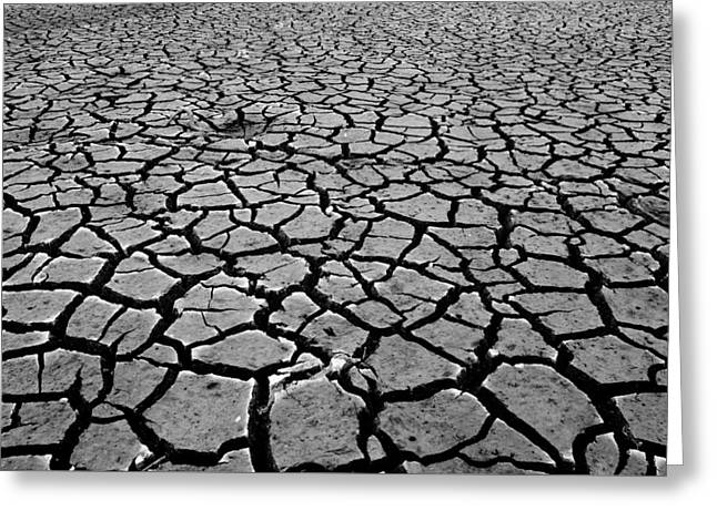 Cracks For Miles Black And White Greeting Card by Teri Schuster