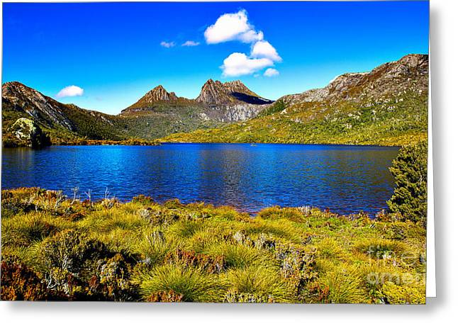 Cradle-mountain Greeting Cards - Cradle Mountain Tasmania Australia Greeting Card by Phill Petrovic