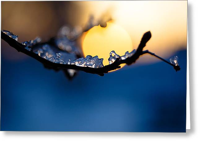 Winter Abstract Greeting Cards - Cradle The Sun In Ice Greeting Card by Shane Holsclaw