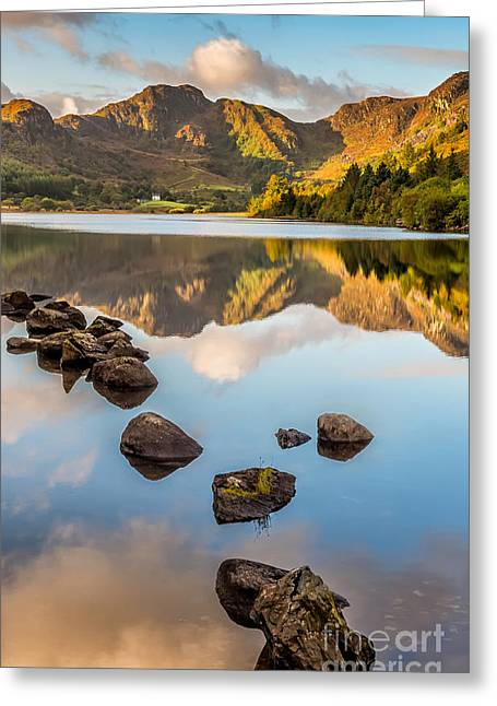 Calm Waters Greeting Cards - Crafnant Rocks Greeting Card by Adrian Evans