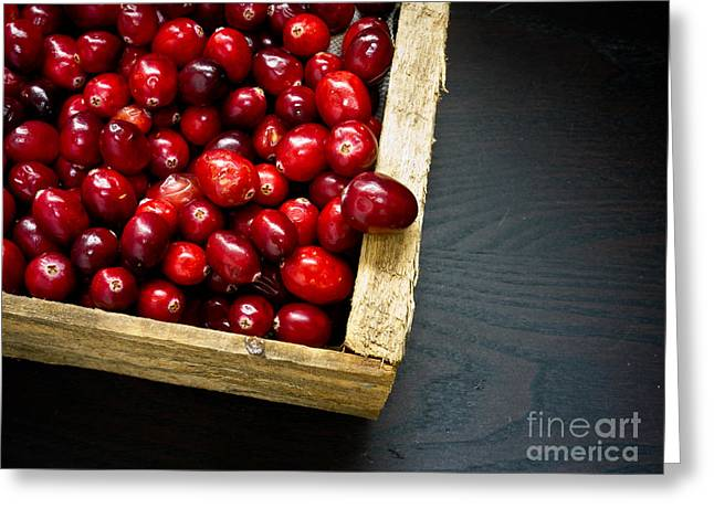 Antioxidant Greeting Cards - Cranberries Greeting Card by Edward Fielding