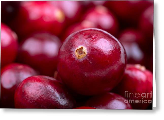 Ruby Greeting Cards - Cranberry closeup Greeting Card by Jane Rix