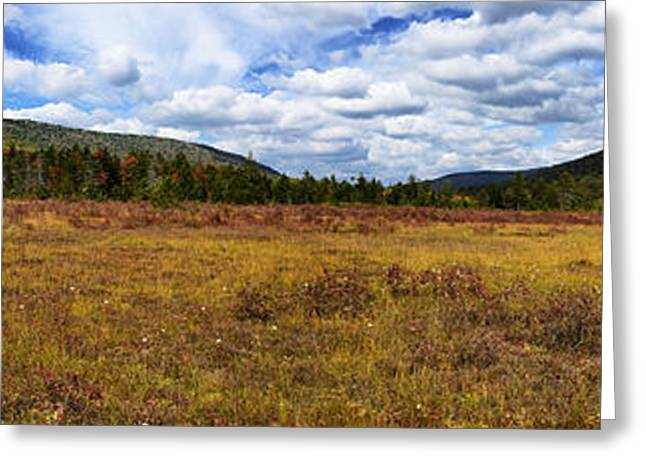 Peat Greeting Cards - Cranberry Glades Botanical Area Panoramic Greeting Card by Thomas R Fletcher