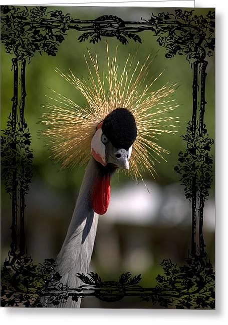 Crowned Head Greeting Cards - Crane Greeting Card by Athala Carole Bruckner