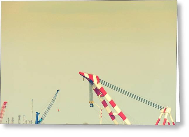 Mechanism Greeting Cards - Cranes Greeting Card by Gabriela Insuratelu