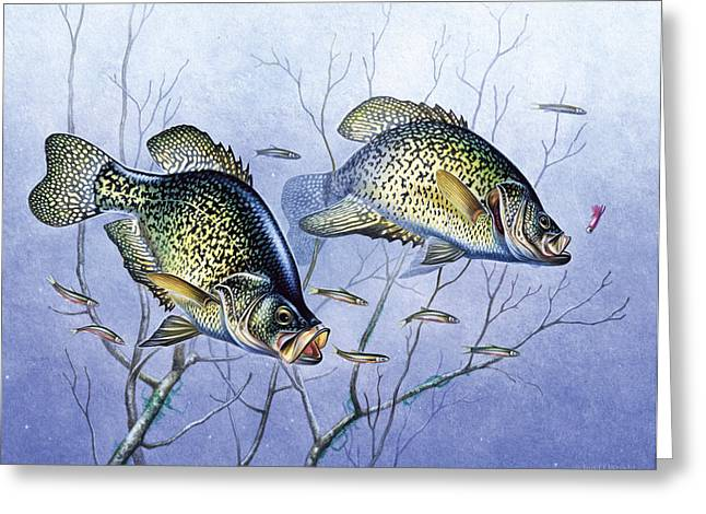 Jq Licensing Paintings Greeting Cards - Crappie Brush Pile Greeting Card by JQ Licensing