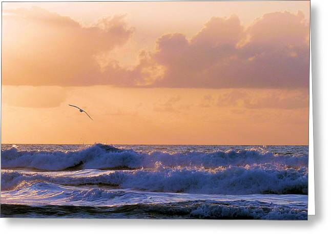 Wrightsville Beach Greeting Cards - Crash Greeting Card by JC Findley