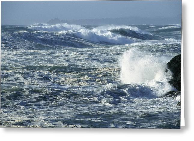 Beach Photos Greeting Cards - Crashing Waves Long Beach Clayoquot Greeting Card by Flip Nicklin