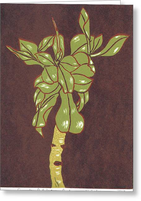 Lino Cut Drawings Greeting Cards - Crassula Portulacea Quata Greeting Card by N Gedze