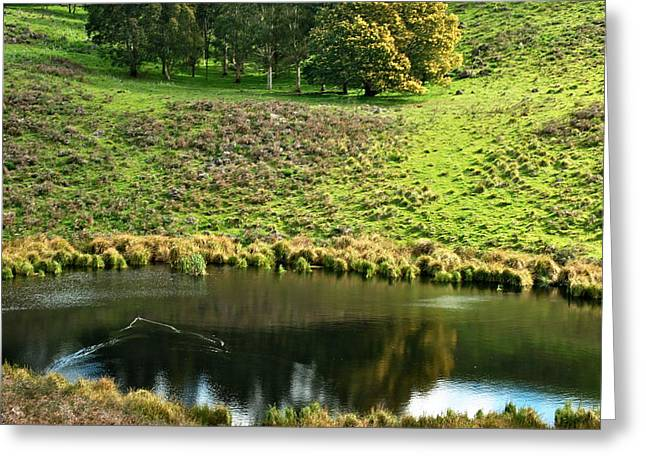 Victoria Crater Greeting Cards - Crater Lake Greeting Card by Katrina Dimond