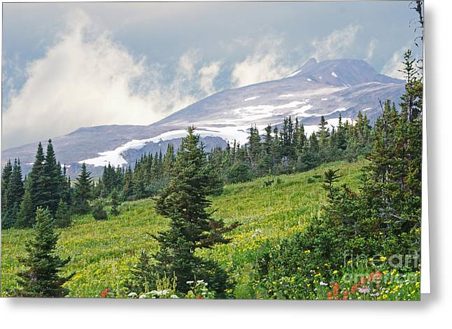 Craters Paintings Greeting Cards - Crater Lake Trail Greeting Card by Stanza Widen