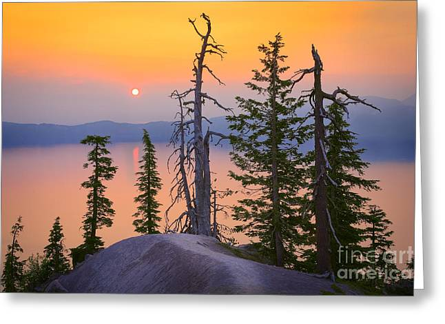Peaceful Scenery Greeting Cards - Crater Lake Trees Greeting Card by Inge Johnsson