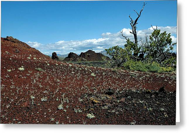 Craters Greeting Cards - Craters of the Moon National Monument Colorful Landscape Greeting Card by Bruce Gourley