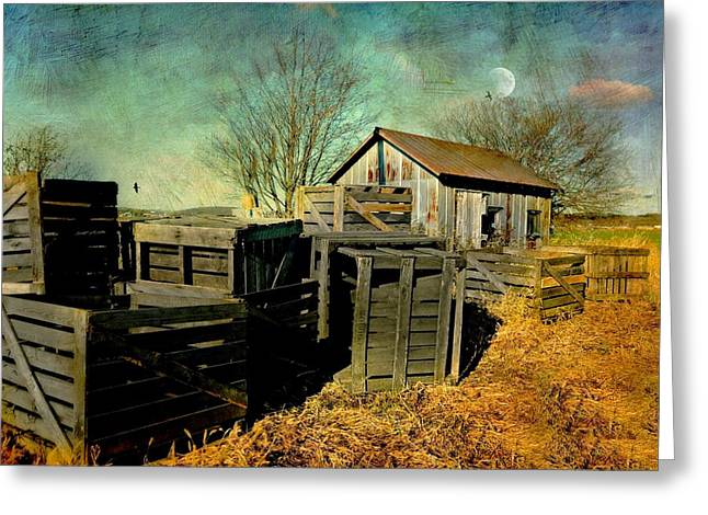 Wooden Shed Greeting Cards - Cratesn Cabin Greeting Card by Diana Angstadt