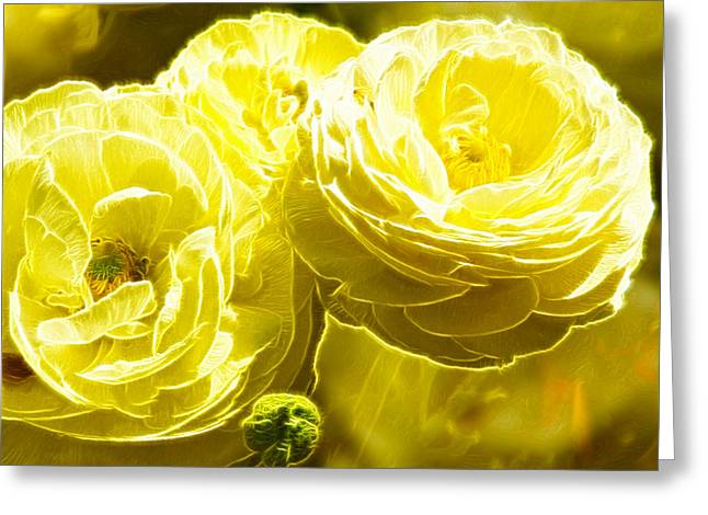 Fractal Flower Greeting Cards - Cream flower Fractals art Greeting Card by David French
