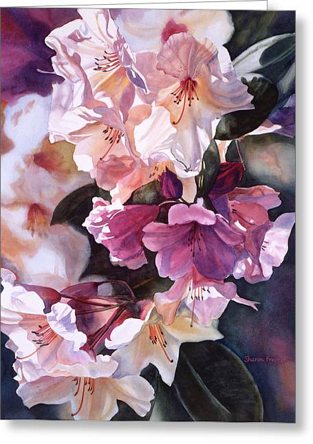 Rhododendrons Greeting Cards - Creamy Rhododendron Greeting Card by Sharon Freeman