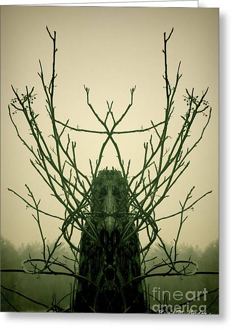 Archetypes Greeting Cards - Creature of the Wood Greeting Card by David Gordon