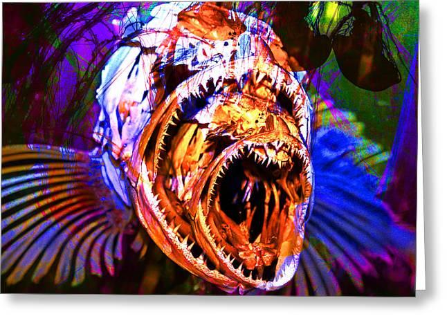 Scuba Diving Greeting Cards - Creatures Of The Deep - Fear No Fish 5D24799 square v2 Greeting Card by Wingsdomain Art and Photography