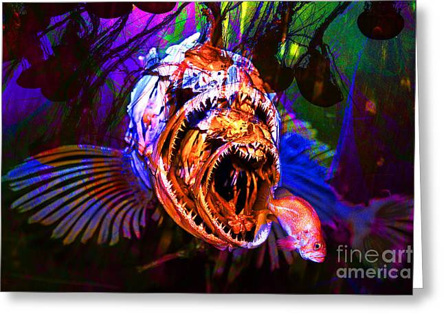 Scuba Diving Greeting Cards - Creatures Of The Deep - Fear No Fish 5D24799 Greeting Card by Wingsdomain Art and Photography