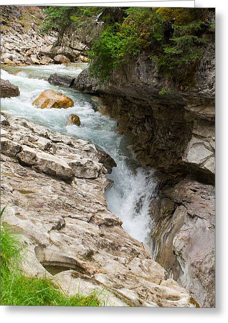 Alberta Water Falls Greeting Cards - Creek and Water Sluce Greeting Card by Douglas Barnett