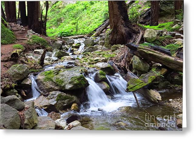 Water Flowing Greeting Cards - Peace and Solitude Greeting Card by Craig Corwin