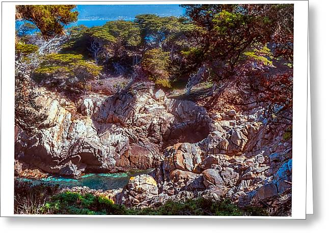 Point Lobos Greeting Cards - Creek at Point Lobos Greeting Card by Steve Benefiel