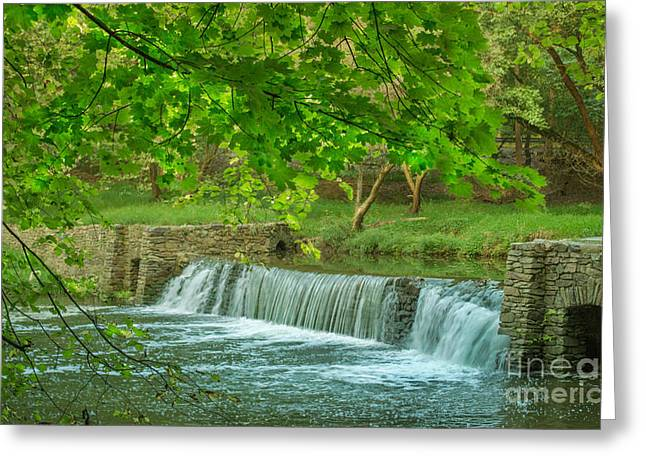 creek at Valley Forge Greeting Card by Rima Biswas