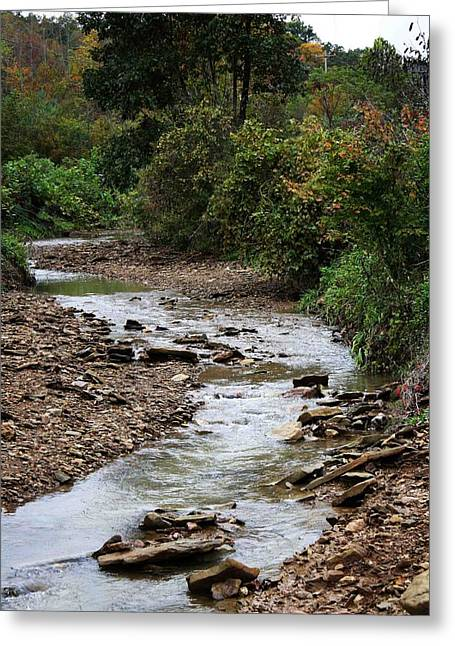 Water Flowing Pyrography Greeting Cards - Creek Bed Greeting Card by William Roush