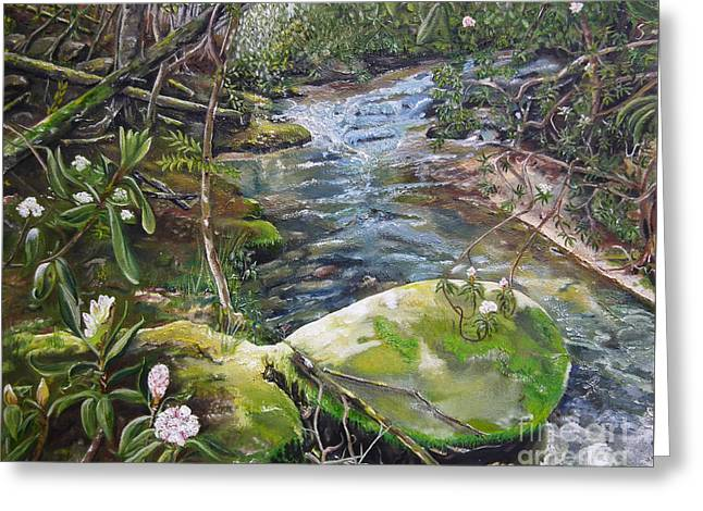 Nature Scene Greeting Cards - Creek -  Beyond the Rock - Mountaintown Creek  Greeting Card by Jan Dappen
