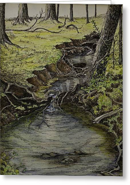 Tree Roots Paintings Greeting Cards - Creek  Greeting Card by Janet Felts