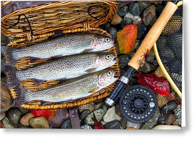 Rainbow Trout Greeting Cards - Creel with Native Trout  Greeting Card by Tom  Baker