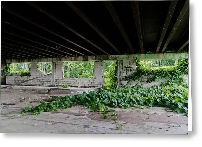 Kudzu Greeting Cards - Creepin Greeting Card by Off The Beaten Path Photography - Andrew Alexander