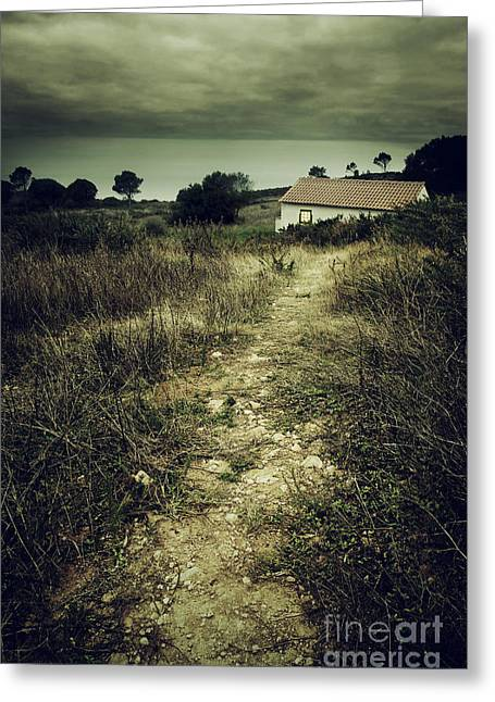 Abandoned House Greeting Cards - Creepy Trail Greeting Card by Carlos Caetano