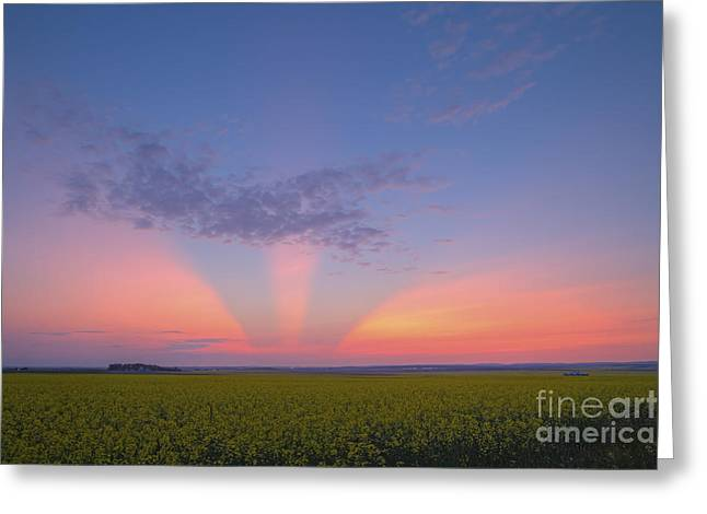 Crepuscular Rays Greeting Cards - Crepuscular Rays At Sunset, Alberta Greeting Card by Alan Dyer