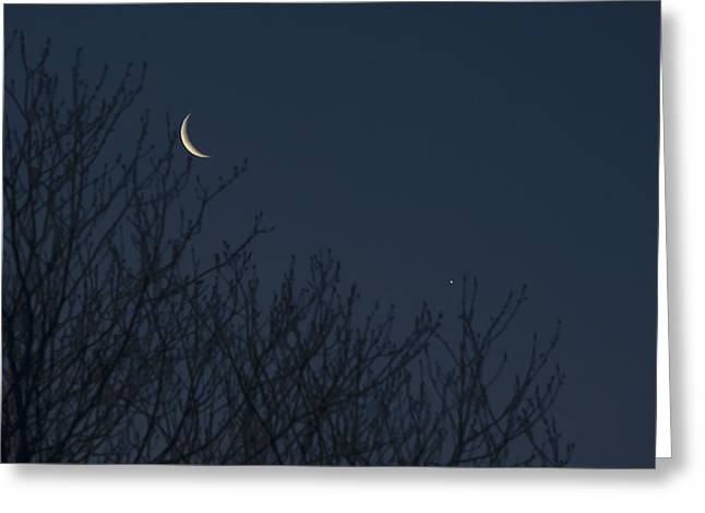 Night Cafe Greeting Cards - Crescent Moon and Venus Greeting Card by Terry DeLuco