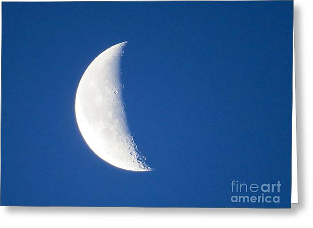 Man In The Moon Greeting Cards - Crescent Moon  Greeting Card by Nancy Patterson