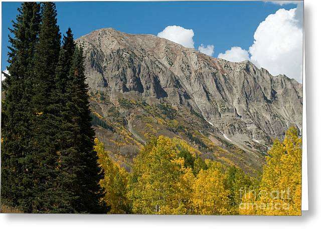 Fall Colors Greeting Cards - Crested Butte Colorado Greeting Card by Lee Roth